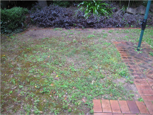 Inness Green Landscaping re-turfing
